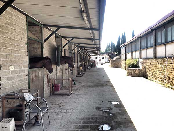 Stables (left), teaching room (right)